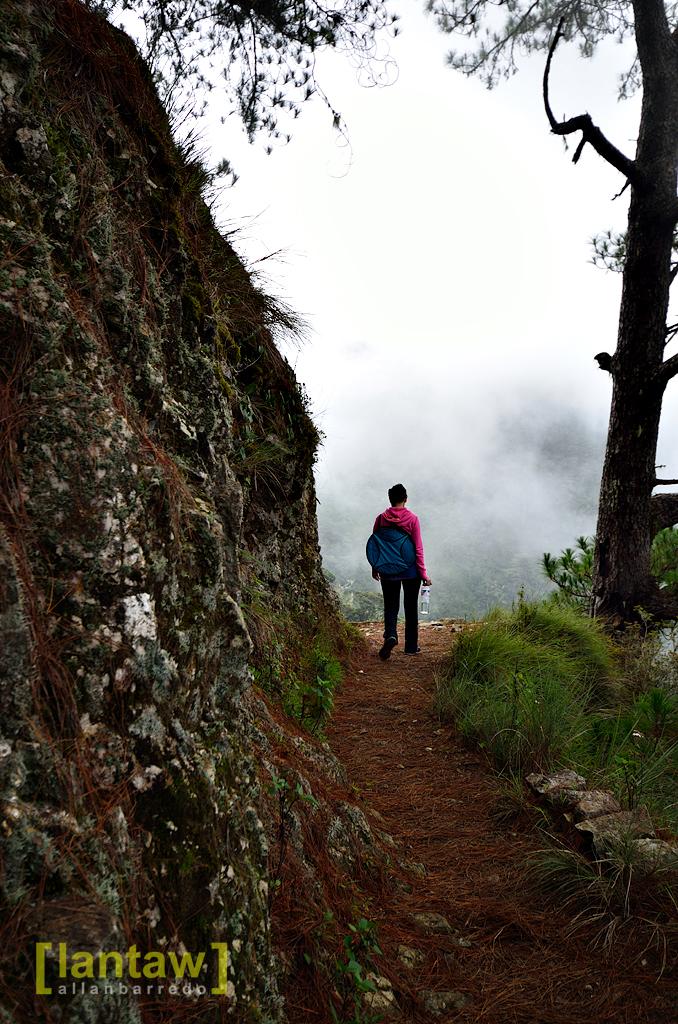 Scenic | Ambangeg Trail Mt. Pulag National Park Visit LANTAW… | Flickr
