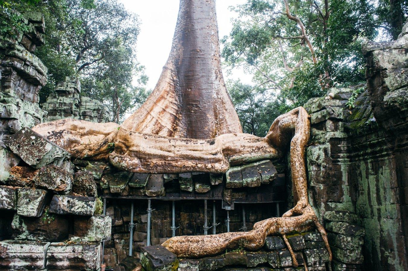 cambodia_digital_6