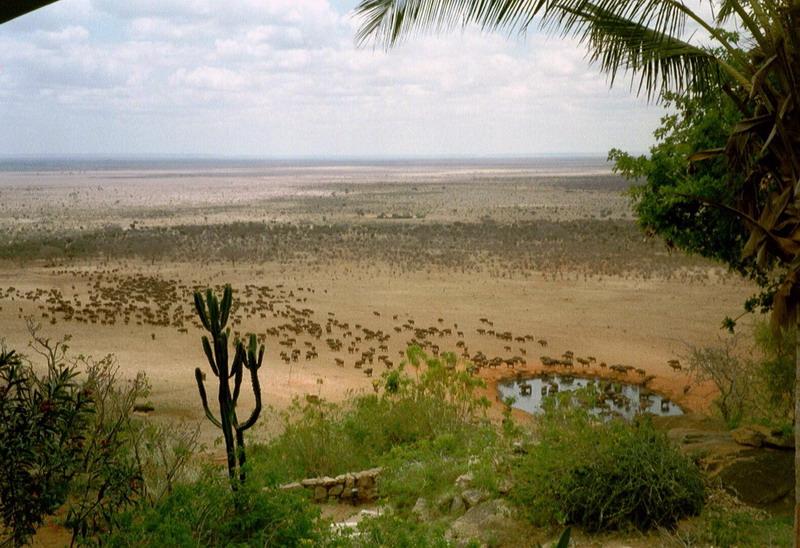 Kenia 2000 - 102
