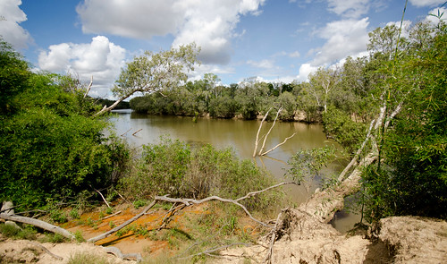 Mary River Minus Crocodiles(1)