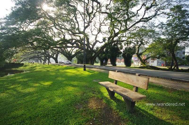 a lone bench at taiping lake gardens