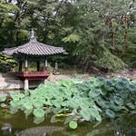 18 Corea del Sur, Changdeokgung Palace   12