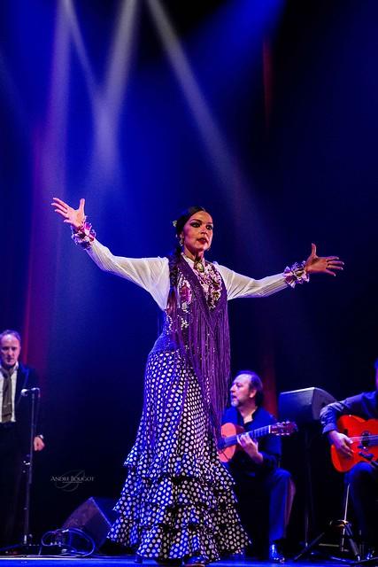flamencas 2015-21