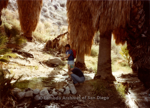 P008.068m.r.t Anza-Borrego Desert 1984: Hikers cooling off at a small stream