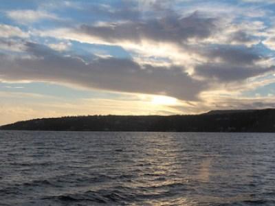 Fotosafari på Husbergøya 21. desember 2013