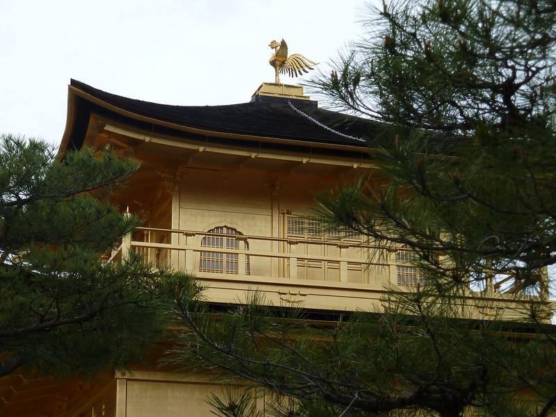 Kinkaku Phoenix