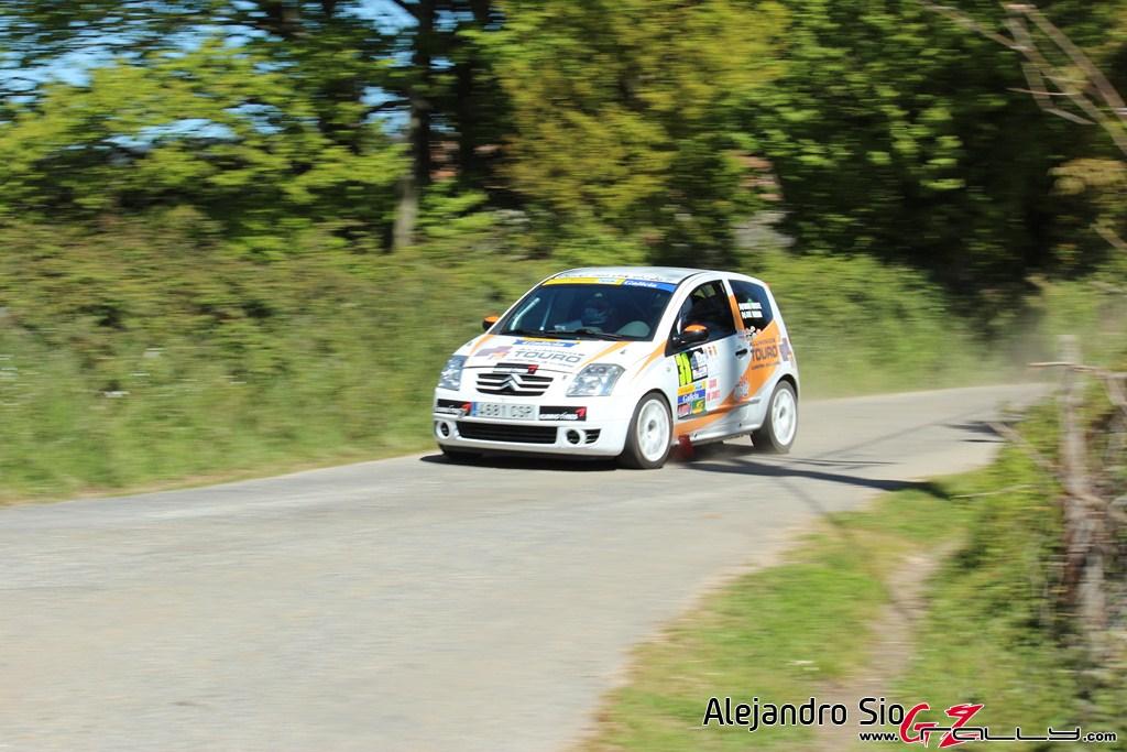 vi_rally_comarca_da_ulloa_132_20150307_2023844525