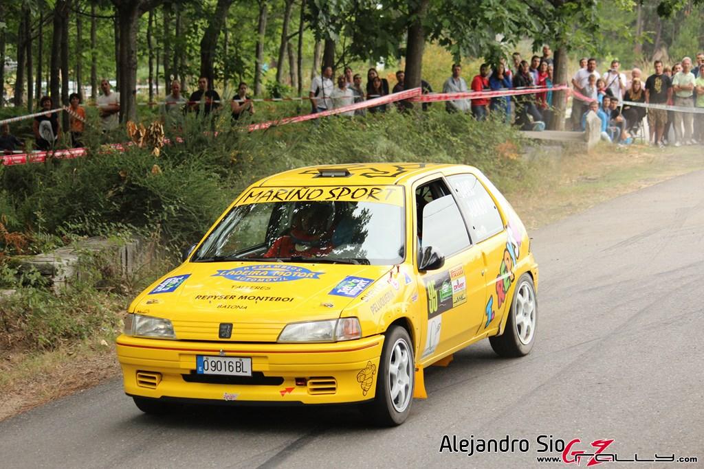 x_rally_sur_do_condado_70_20150307_1588344235