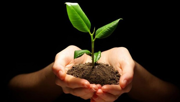 Mi.Vida_.Sustentable