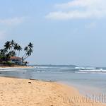 16 Viajefilos en Sri Lanka. Bentota 13