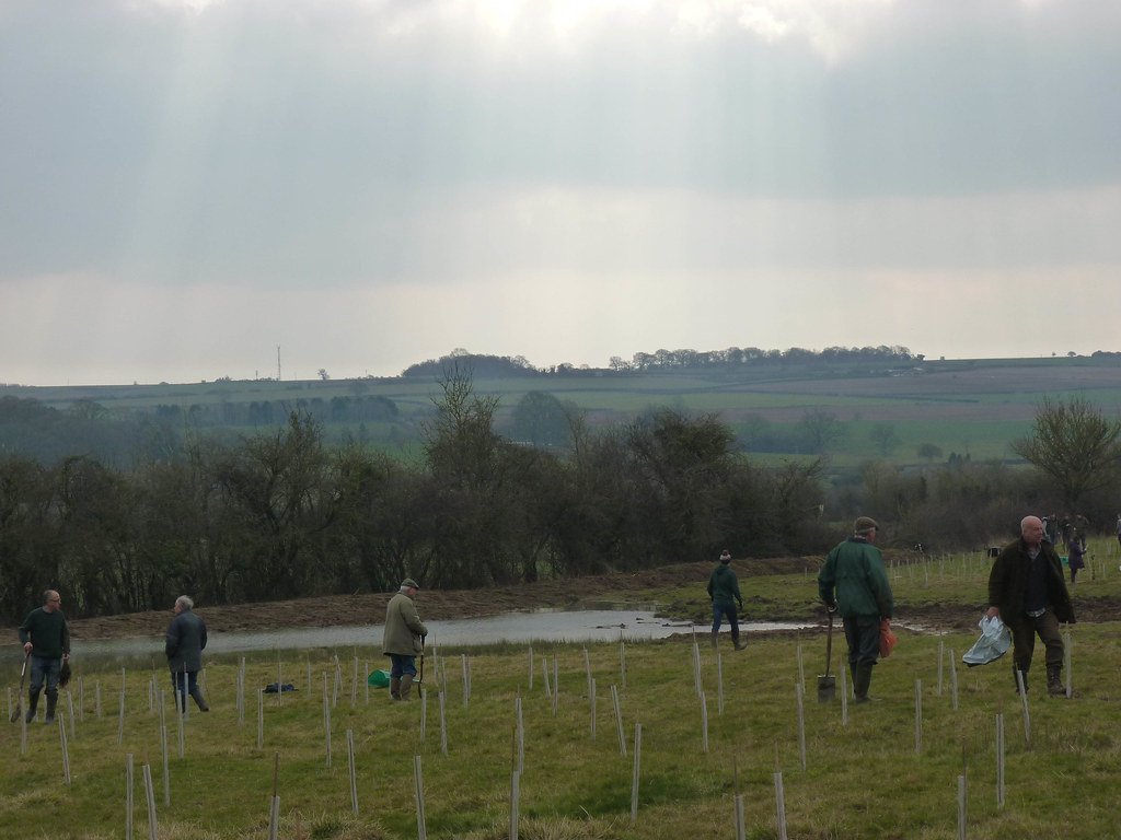 Working in the second plantation