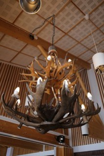 Really cool Reindeer antler lights