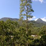 11 Viajefilos en Sri Lanka. Adams Peak 26