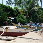 16 Viajefilos en Sri Lanka. Bentota 12