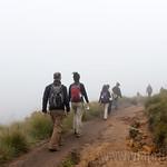 12 Viajefilos en Sri Lanka. Nuwara Eliya 24