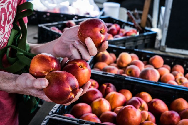 imperfect but delicious nectarines at the farmers market