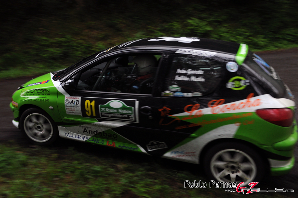 rally_de_naron_2012_-_paul_91_20150304_1171721001