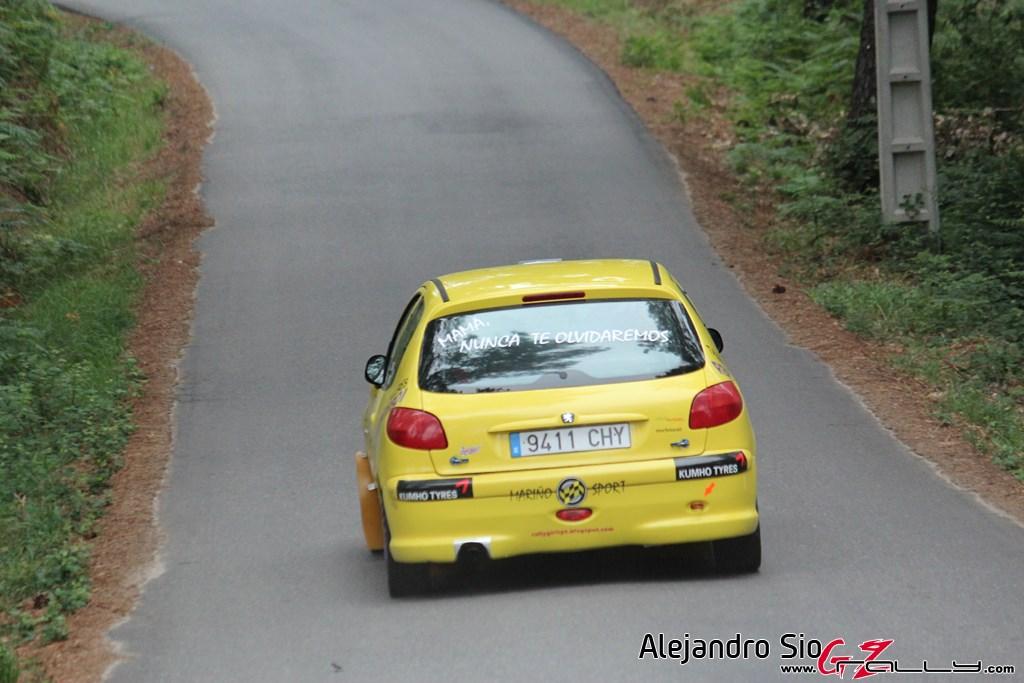 x_rally_sur_do_condado_53_20150307_1392791796