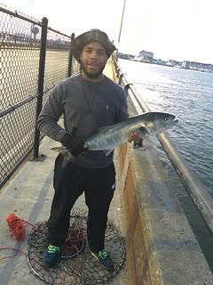Photo of Man holding bluefish