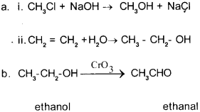 Plus Two Chemistry Chapter Wise Previous Questions Chapter 11 Alcohols, Phenols and Ethers 13