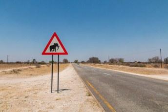 Tijdens mijn reis heb ik al heel wat dieren op waarschuwingsborden zien staan, maar dit is de eerste olifant.