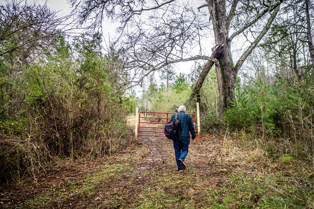 Tall Pines Preserve and South Saluda Church Cemetery-103