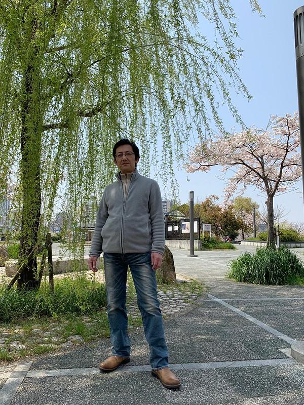 2019年4月6日、桜と柳を背景に、妻に撮影してもらった写真です。大阪市都島区の蕪村公園にて。リーバイスの502号のジーンズをはいています。
