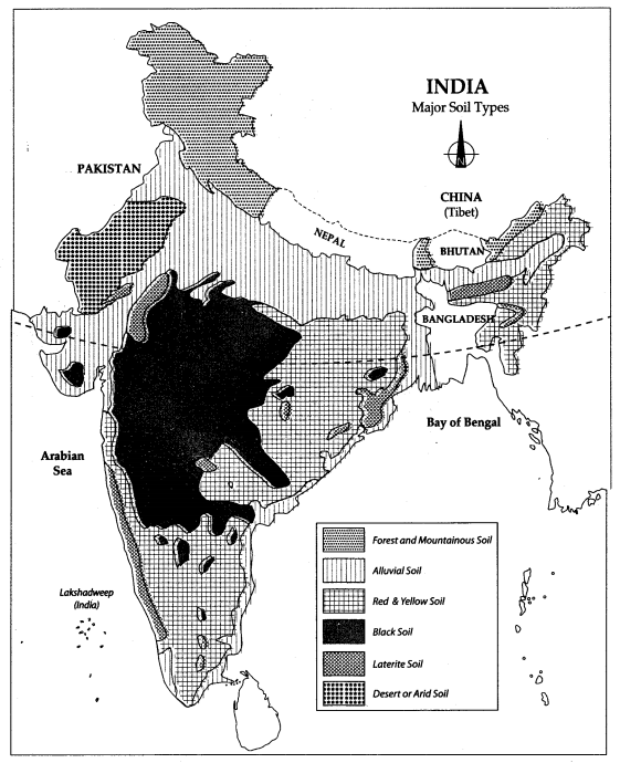 Cl 10 Geography Map Work Chapter 1 Resource and ... Geography Map Of India Images on map of india history, map of india architecture, map of india mount everest, map of india provinces, ancient india geography, map of india indus valley, map of india china, map of india california, history geography, map of india area, map of india rivers, map of india states, map of india landscape, map of india japan, map of india religion, map of india atlas, map of asia, map of india africa, map of india food, map of india languages,