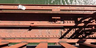 GGB Coins on the Rail SR600316