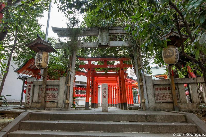 Entrada al pequeño túnel de puertas rojas torii del santuario Toyosaka Inari