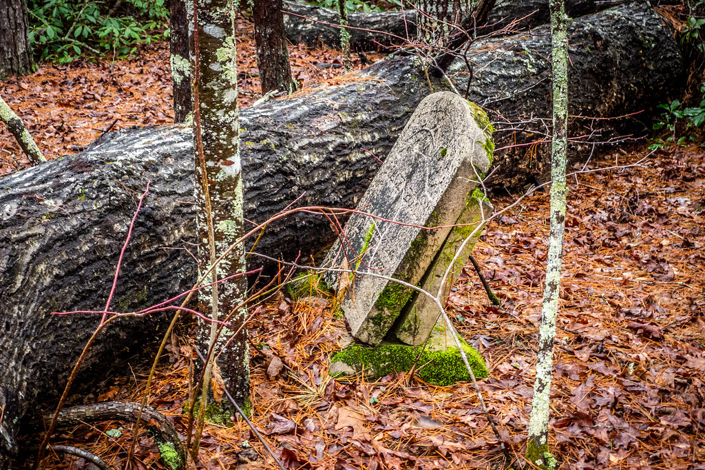 Tall Pines Preserve and South Saluda Church Cemetery-55