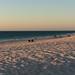 Mullaloo Beach at sunset