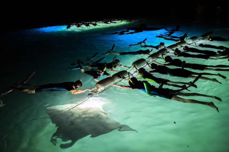 MANTA RAY NIGHT SNORKEL WITH SEA PARADISE
