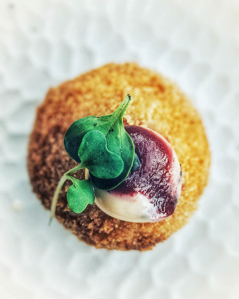 A photo of a mushroom croquette with beetroot sauce and microherbs on top