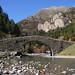Pont romànic sobre el riu Ara, a la vall de Bujaruelo (Pirineu d'Osca)