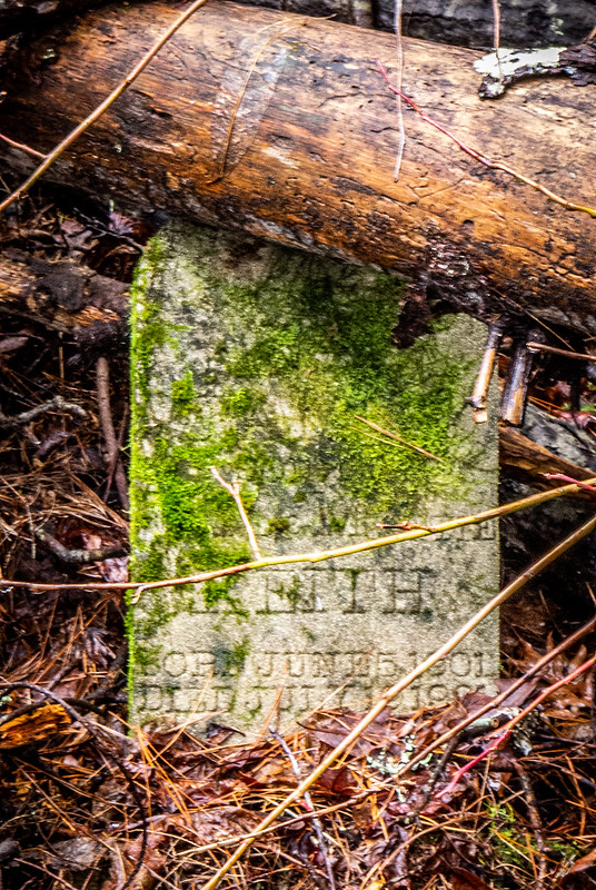 Tall Pines Preserve and South Saluda Church Cemetery-37
