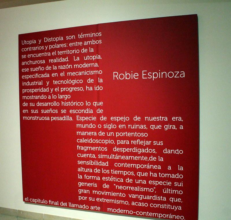 Texto de sala - Robie Espinoza