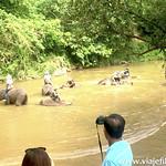 Lucia en el Norte de Tailandia, Viajefilos 165