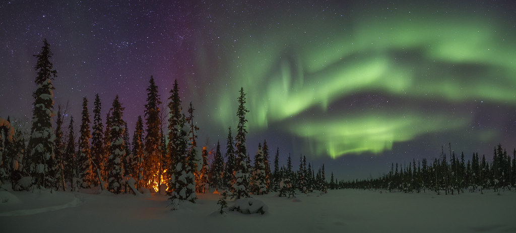 The biome color will be mostly look like the taiga's, but it will be a. Taiga Forest At Winter Night Jukka Brusila Flickr