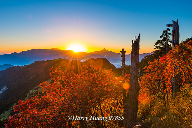 Harry_07855.雪山山脈.中央山脈.南湖大山.中央尖山.北一段.巒大花楸.秋天.秋季.紅葉.369山莊.三六… | Flickr