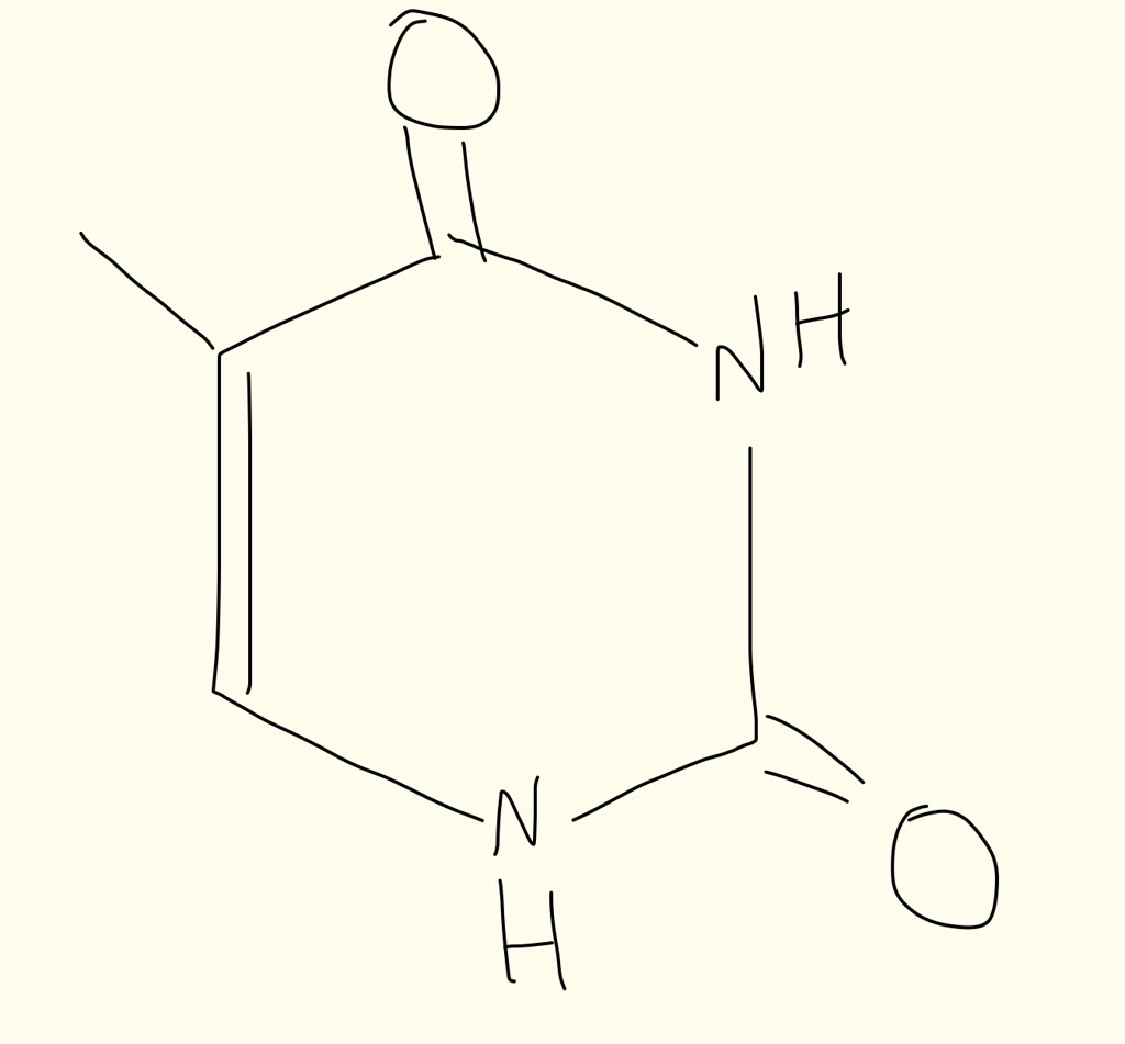 hight resolution of thymine structure by dw623 thymine structure by dw623