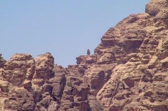 Opeens zag ik een torentje boven de rotsen uitsteken, dus daar wilde ik uiteraard naartoe.
