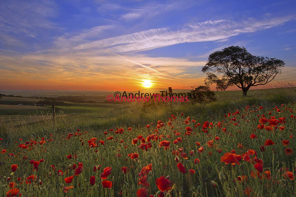 Hd Live Wallpaper In 3d English Summer Morning Andrew Thomas Flickr