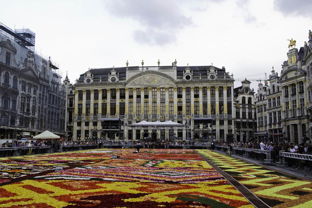 belgique bruxelles grand place tapis de fleurs 2012 a photo on flickriver