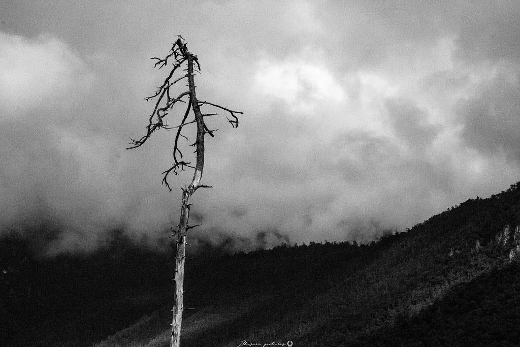 無念無想 [ 무념무상 ] 1   freedom from all ideas and thoughts   illusion1114   Flickr