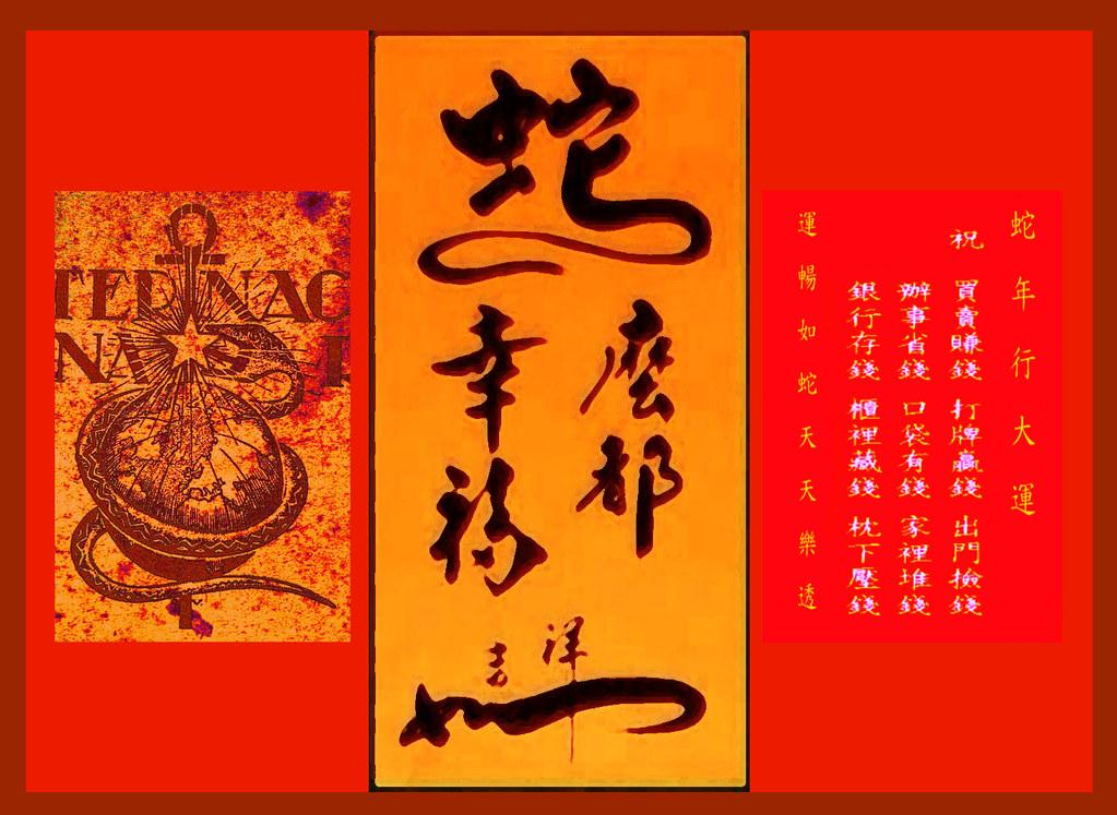 year-of- the snake 蛇 醫學的圖騰 希望今年醫師們會好過一些 | 世界衛生組織旗幟上的圖徽中有一條蛇,… | Flickr