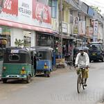 14 Viajefilos en Sri Lanka. Yala 54