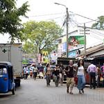14 Viajefilos en Sri Lanka. Yala 53