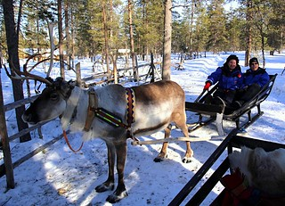 After our mad reindeer ride, with our mad reindeer