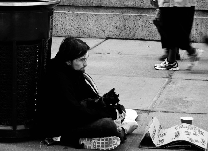 Homeless Man & 2 Cats
